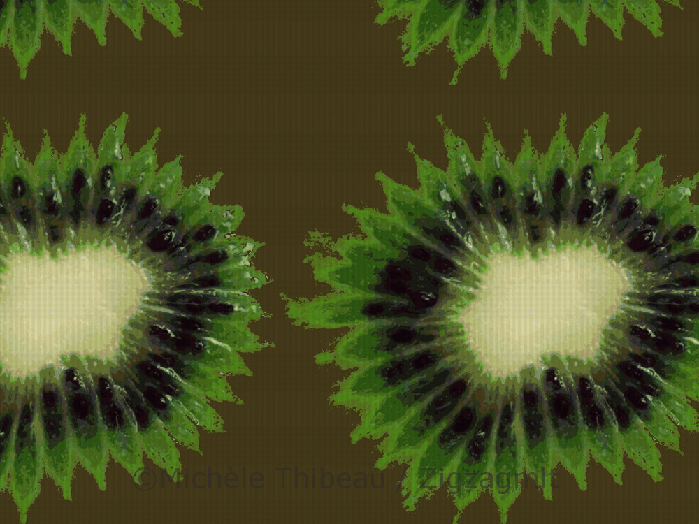 A pattern from the Fall for Kiwi Collection, created in 2015. Inspired and developed from an image taken of a kiwi.